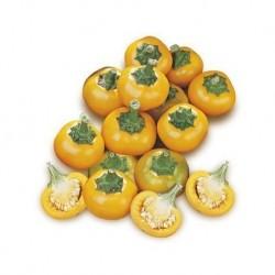Peperoncino ciliegia Giallo secco