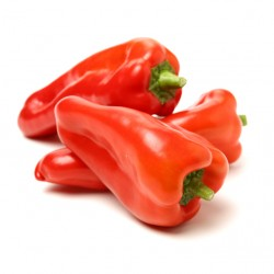 Red Carpet elongated red pepper seeds