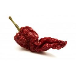 Cruschi pepper seeds