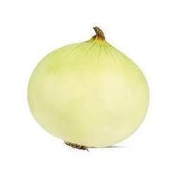 Musona White Onion Seeds