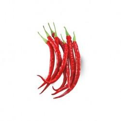 Cayenne hot elongated pepper seeds