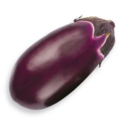 Semi Melanzana ovale violetta Seta
