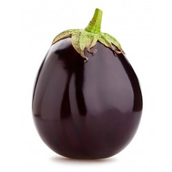 Semi melanzana ovale nera
