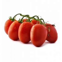 Piccadilly cherry tomato seeds