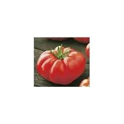 Marmandino ribbed tomato seeds