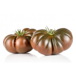 Blue blood ribbed tomato seeds