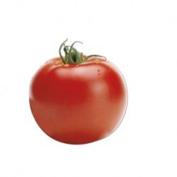Round smooth tomato seeds