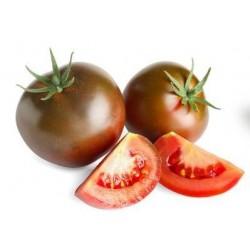 Kakao black tomato seeds