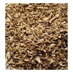 Ortolani Giant Escarole Seeds