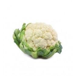 Vidoke white cauliflower seeds