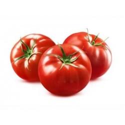 Optima round tomato seeds