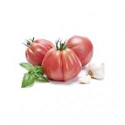 Semi di pomodoro cuor di bue Rosamunda