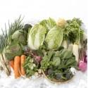 Winter vegetables seeds