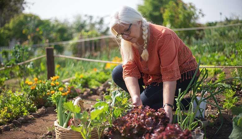 donna anziana orto